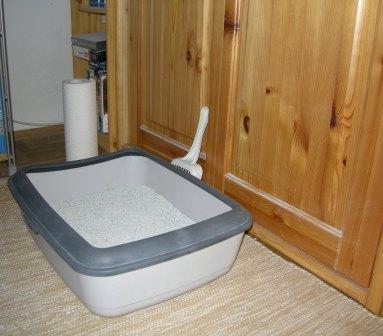 Katzenklo Schlafzimmer