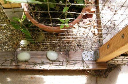Sicherung des Netzes am Boden