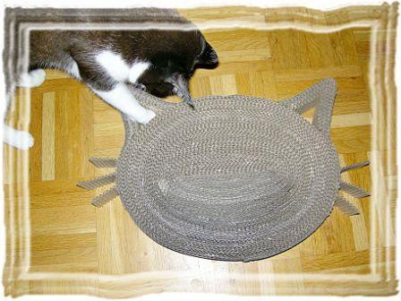 Katze mit Kratzboard