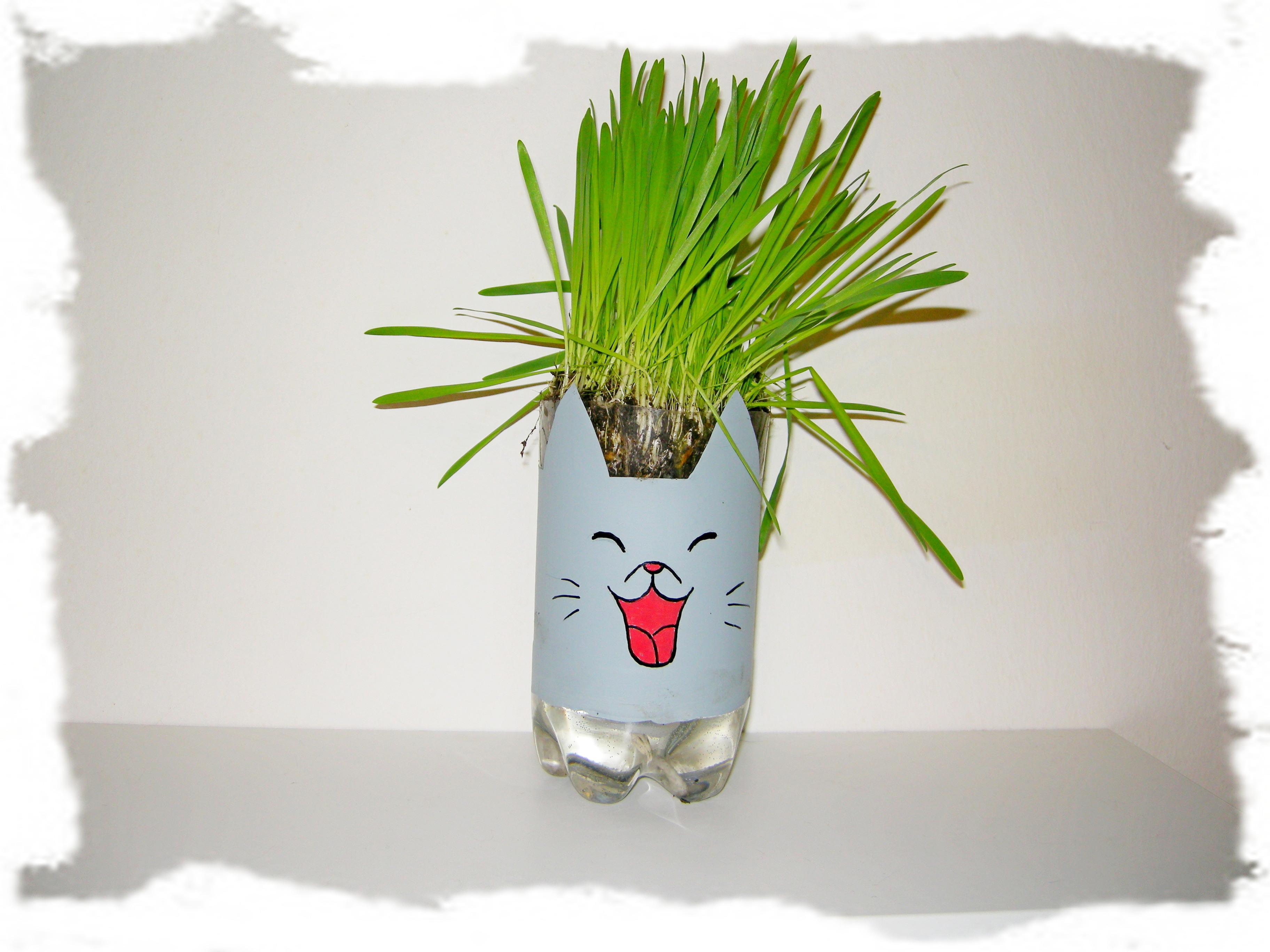 bepflanzbarer Wasserspender