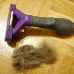 FURminator mit Haarbüschel