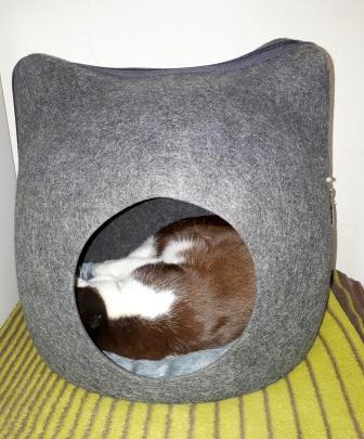 Kuschelhöhle Cat